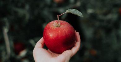 soñar con manzanas significado